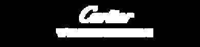 CWI Community logo